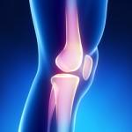 omaha knee doctor