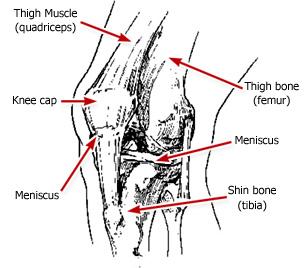 omaha knee pain education