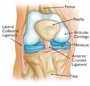 total knee replacement omaha